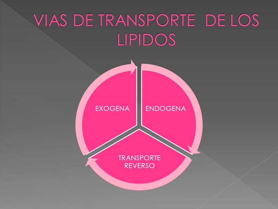 VIAS DE TRANSPORTE DE LOS LIPIDOS