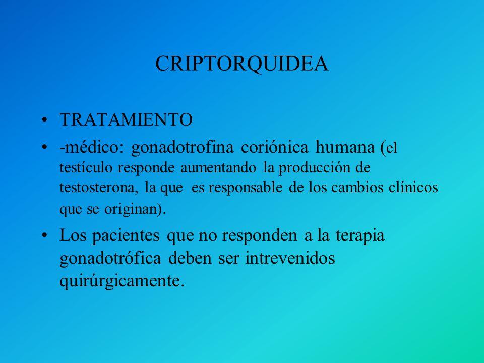 CRIPTORQUIDEA TRATAMIENTO