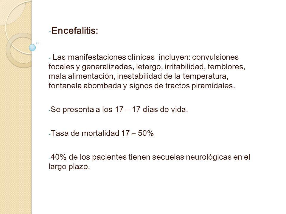Encefalitis:
