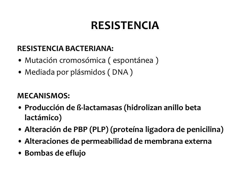 RESISTENCIA RESISTENCIA BACTERIANA: