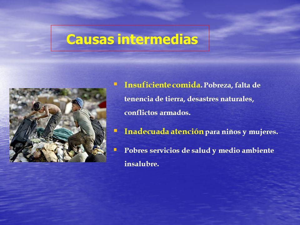 Causas intermedias Insuficiente comida. Pobreza, falta de tenencia de tierra, desastres naturales, conflictos armados.