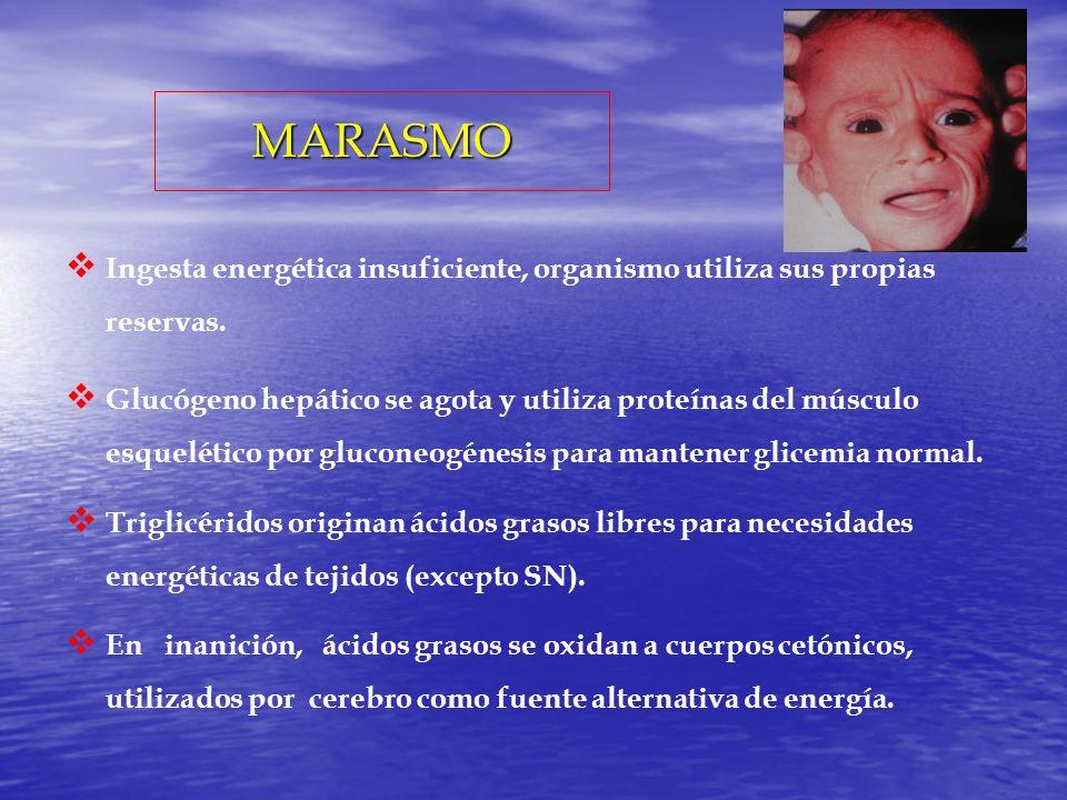 MARASMO Ingesta energética insuficiente, organismo utiliza sus propias reservas.