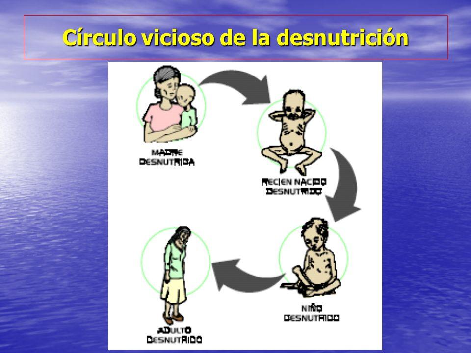 Círculo vicioso de la desnutrición