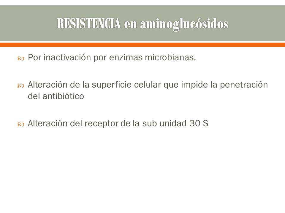 RESISTENCIA en aminoglucósidos