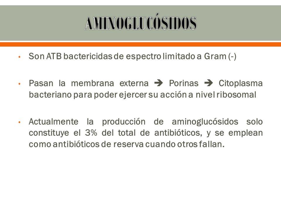 AMINOGLUCÓSIDOS Son ATB bactericidas de espectro limitado a Gram (-)