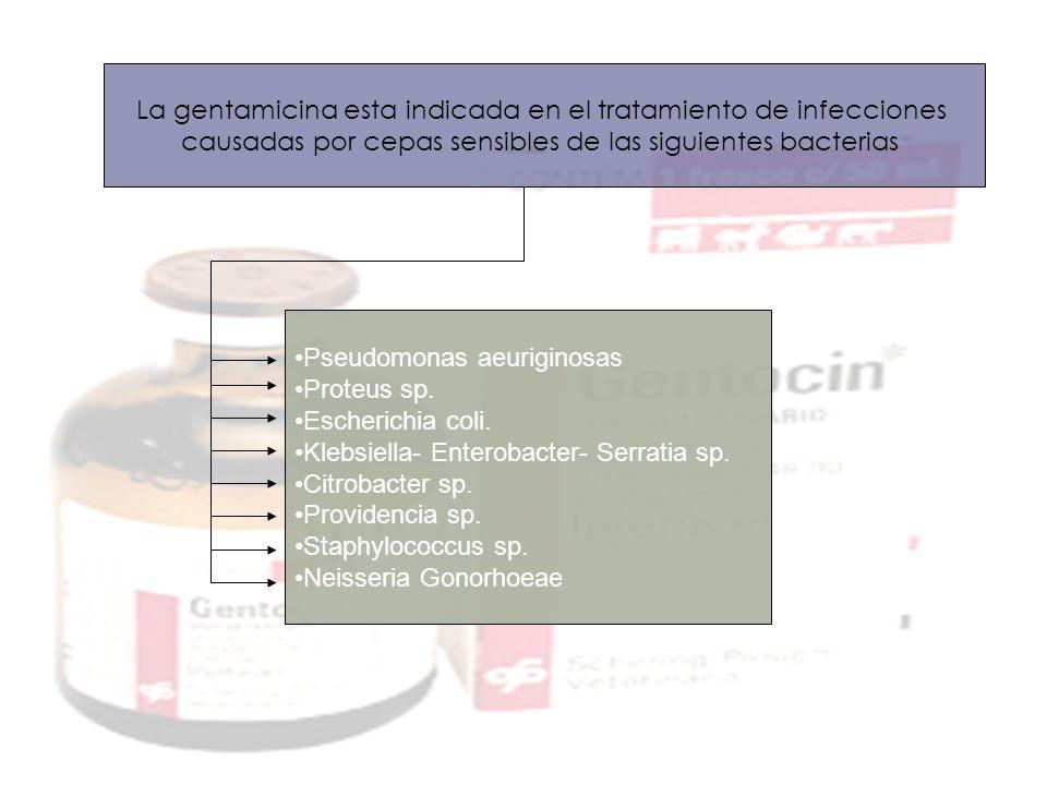 La gentamicina esta indicada en el tratamiento de infecciones