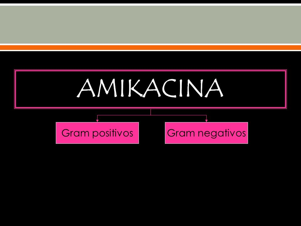 AMIKACINA Gram positivos Gram negativos