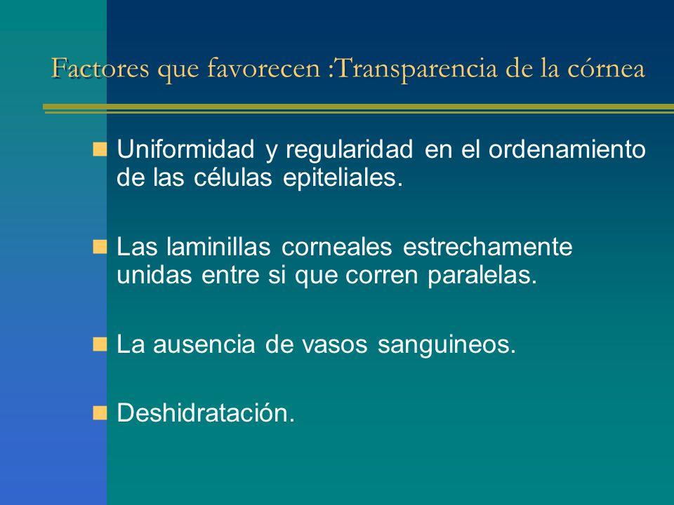 Factores que favorecen :Transparencia de la córnea