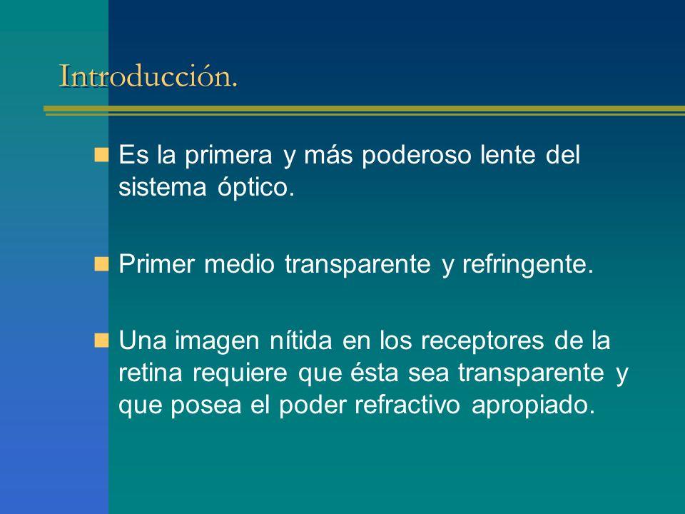 Introducción. Es la primera y más poderoso lente del sistema óptico.