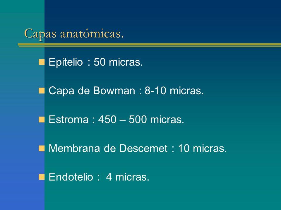 Capas anatómicas. Epitelio : 50 micras. Capa de Bowman : 8-10 micras.