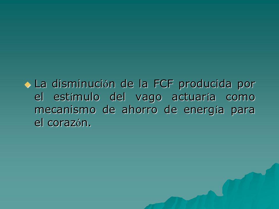 La disminución de la FCF producida por el estímulo del vago actuaría como mecanismo de ahorro de energía para el corazón.