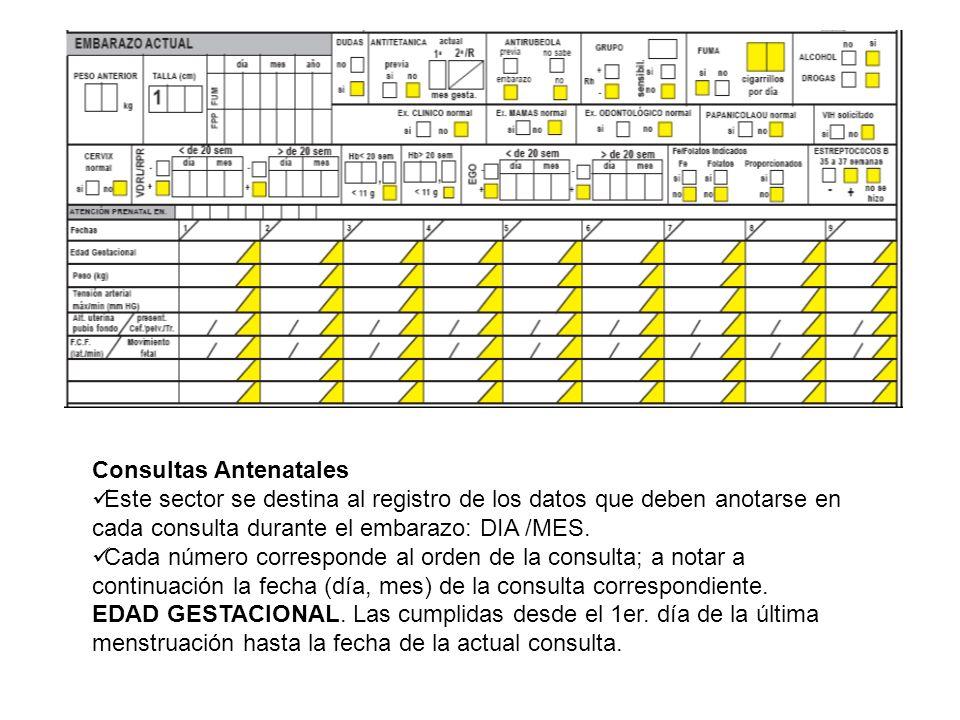 Consultas Antenatales