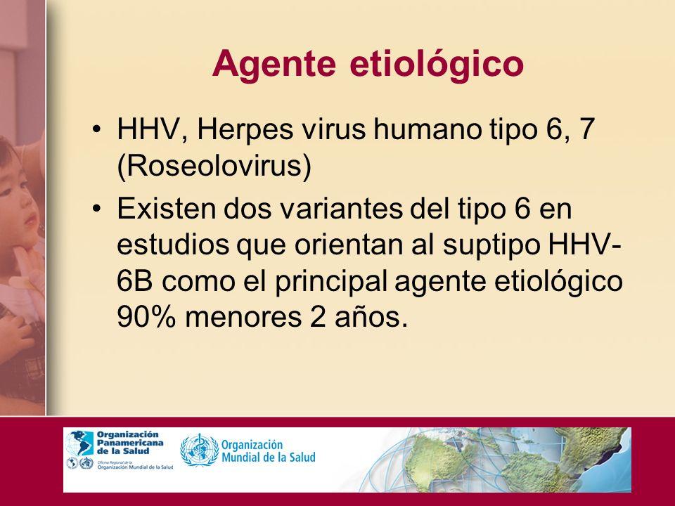Agente etiológico HHV, Herpes virus humano tipo 6, 7 (Roseolovirus)