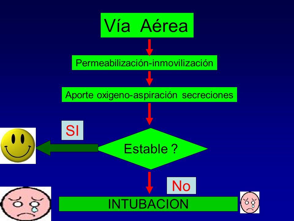 Vía Aérea SI No Estable INTUBACION Permeabilización-inmovilización