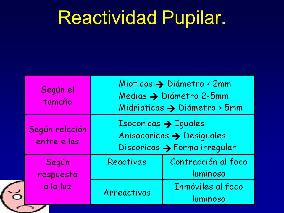 Reactividad Pupilar.