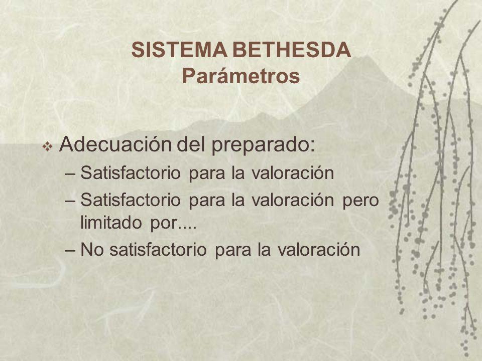 SISTEMA BETHESDA Parámetros