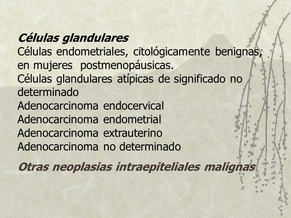 Células glandulares Células endometriales, citológicamente benignas, en mujeres postmenopáusicas. Células glandulares atípicas de significado no determinado Adenocarcinoma endocervical Adenocarcinoma endometrial Adenocarcinoma extrauterino Adenocarcinoma no determinado