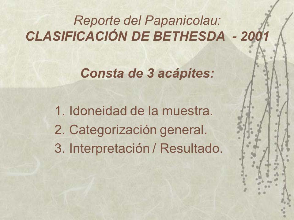 Reporte del Papanicolau: CLASIFICACIÓN DE BETHESDA - 2001
