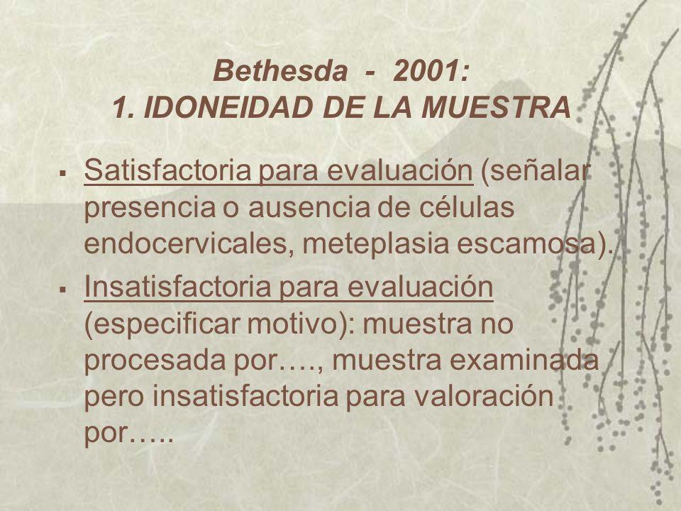 Bethesda - 2001: 1. IDONEIDAD DE LA MUESTRA
