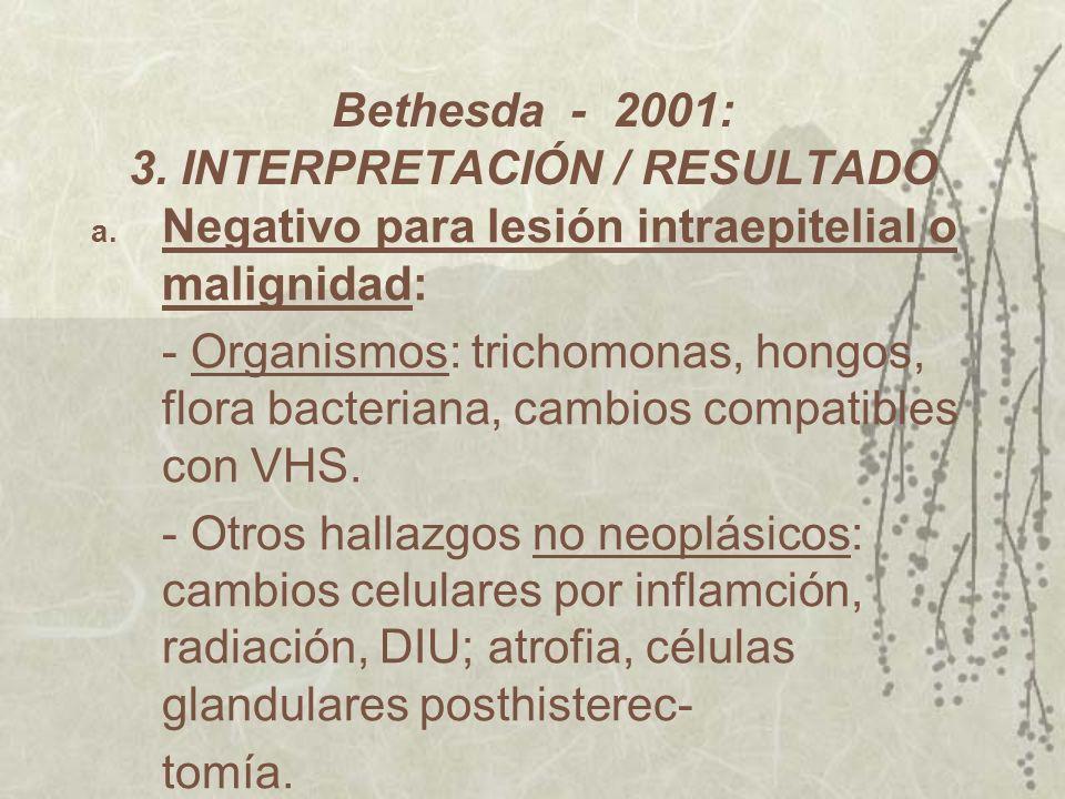 Bethesda - 2001: 3. INTERPRETACIÓN / RESULTADO