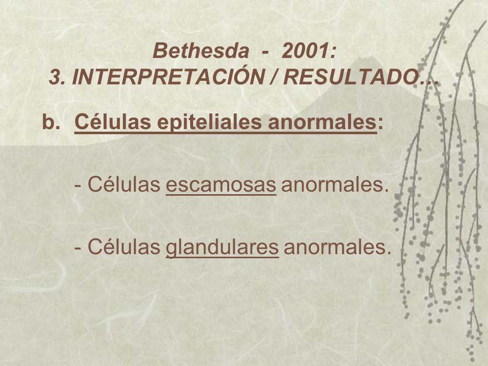 Bethesda - 2001: 3. INTERPRETACIÓN / RESULTADO…
