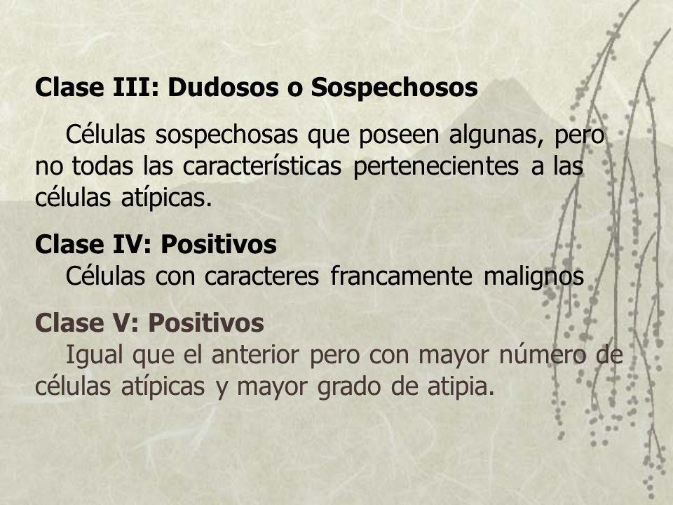 Clase III: Dudosos o Sospechosos