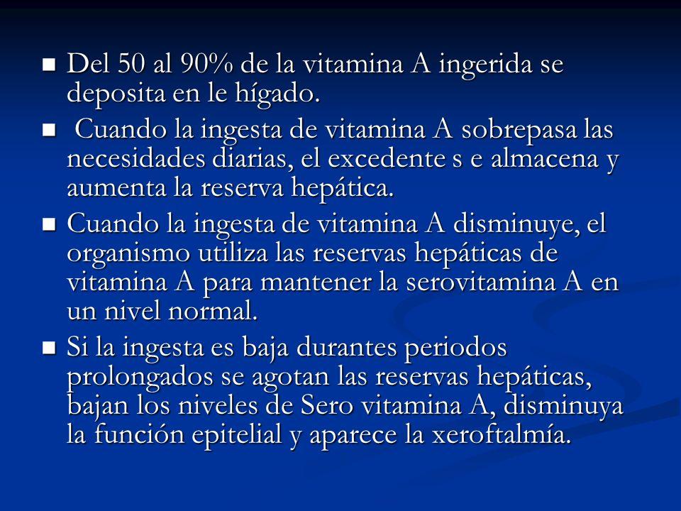 Del 50 al 90% de la vitamina A ingerida se deposita en le hígado.