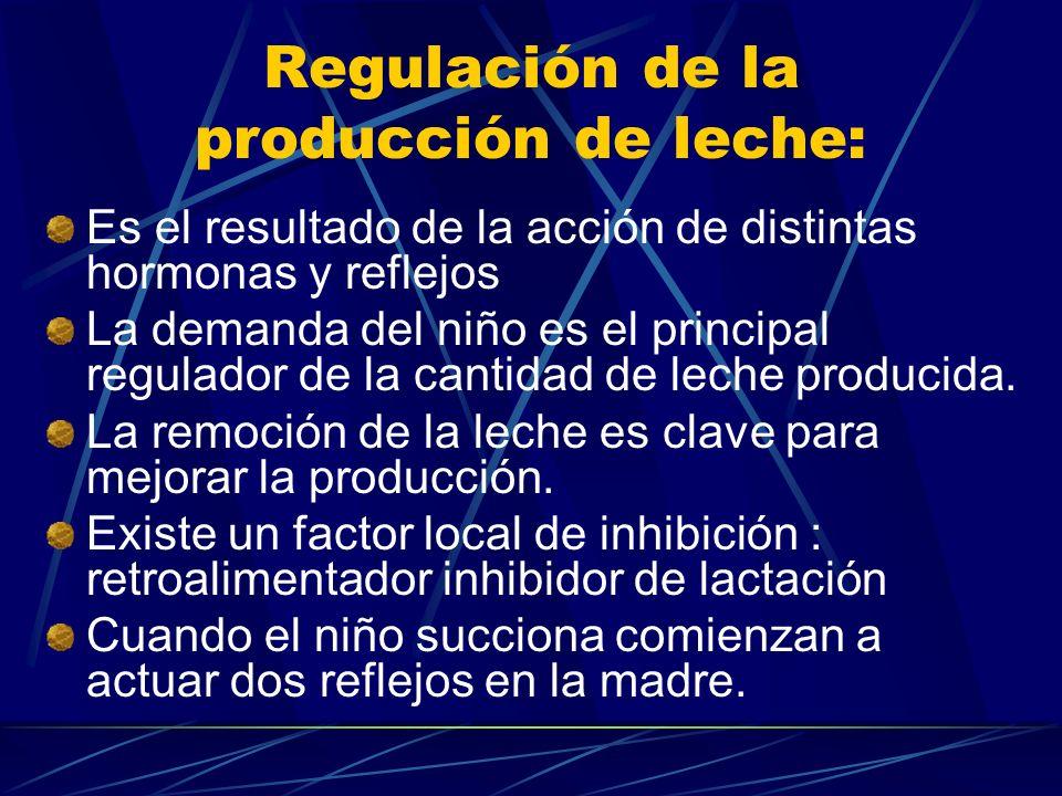 Regulación de la producción de leche: