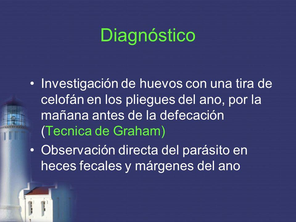 DiagnósticoInvestigación de huevos con una tira de celofán en los pliegues del ano, por la mañana antes de la defecación (Tecnica de Graham)