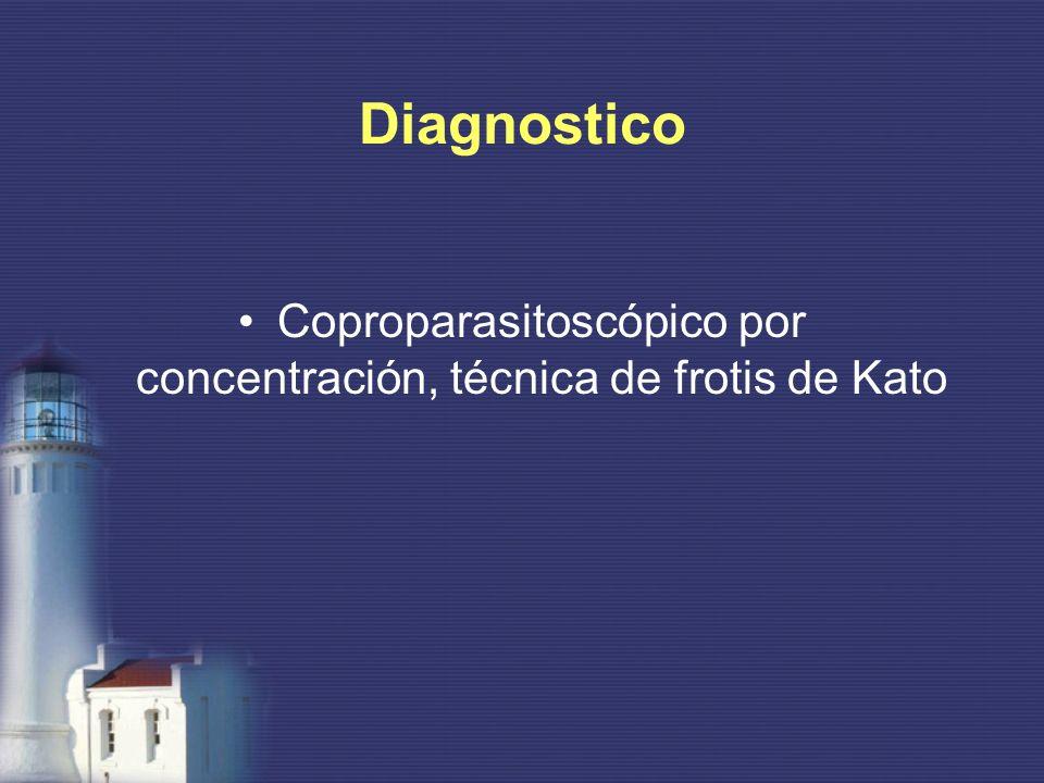Coproparasitoscópico por concentración, técnica de frotis de Kato