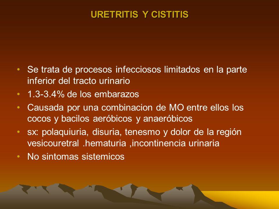 URETRITIS Y CISTITIS Se trata de procesos infecciosos limitados en la parte inferior del tracto urinario.