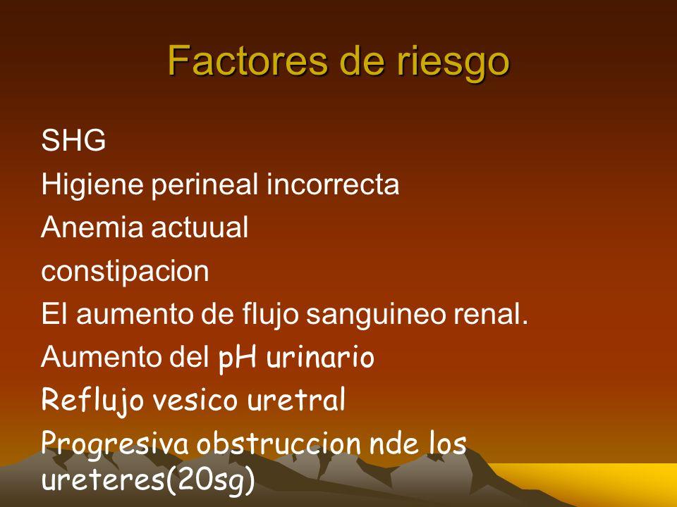 Factores de riesgo SHG Higiene perineal incorrecta Anemia actuual