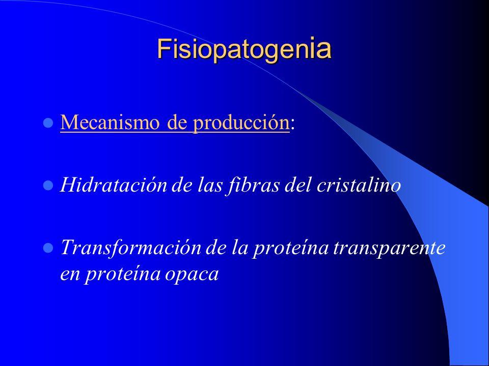 Fisiopatogenia Mecanismo de producción: