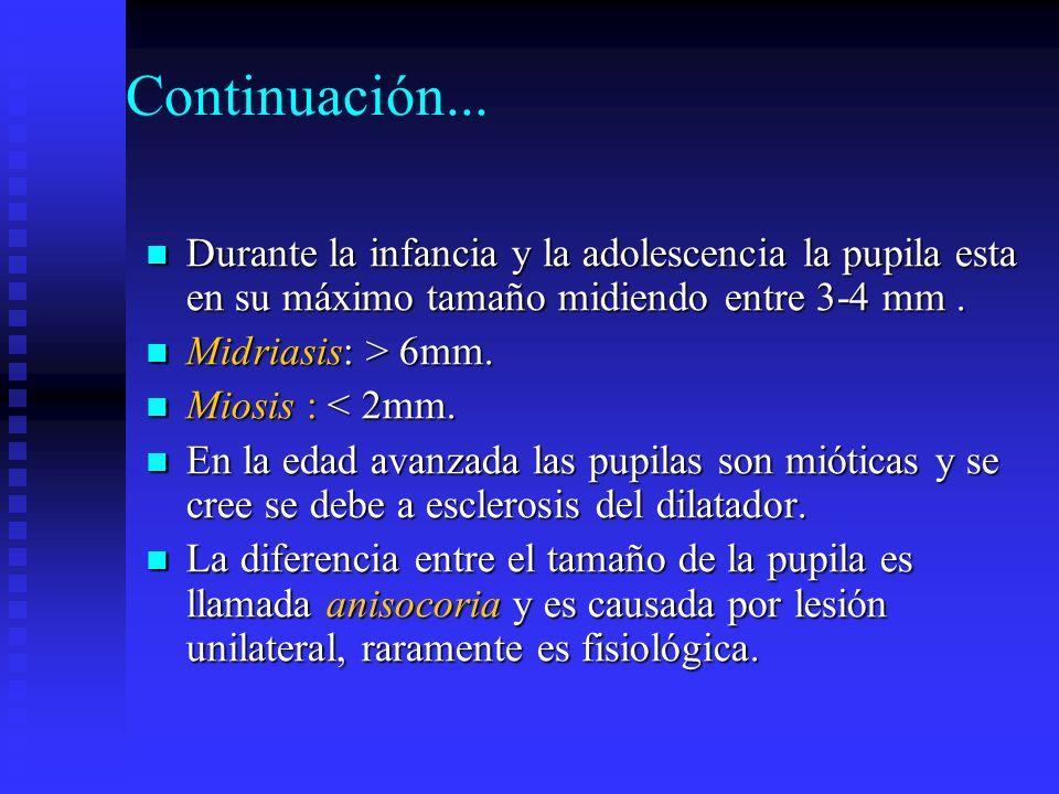 Continuación... Durante la infancia y la adolescencia la pupila esta en su máximo tamaño midiendo entre 3-4 mm .