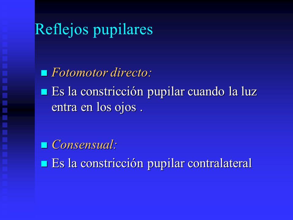 Reflejos pupilares Fotomotor directo: