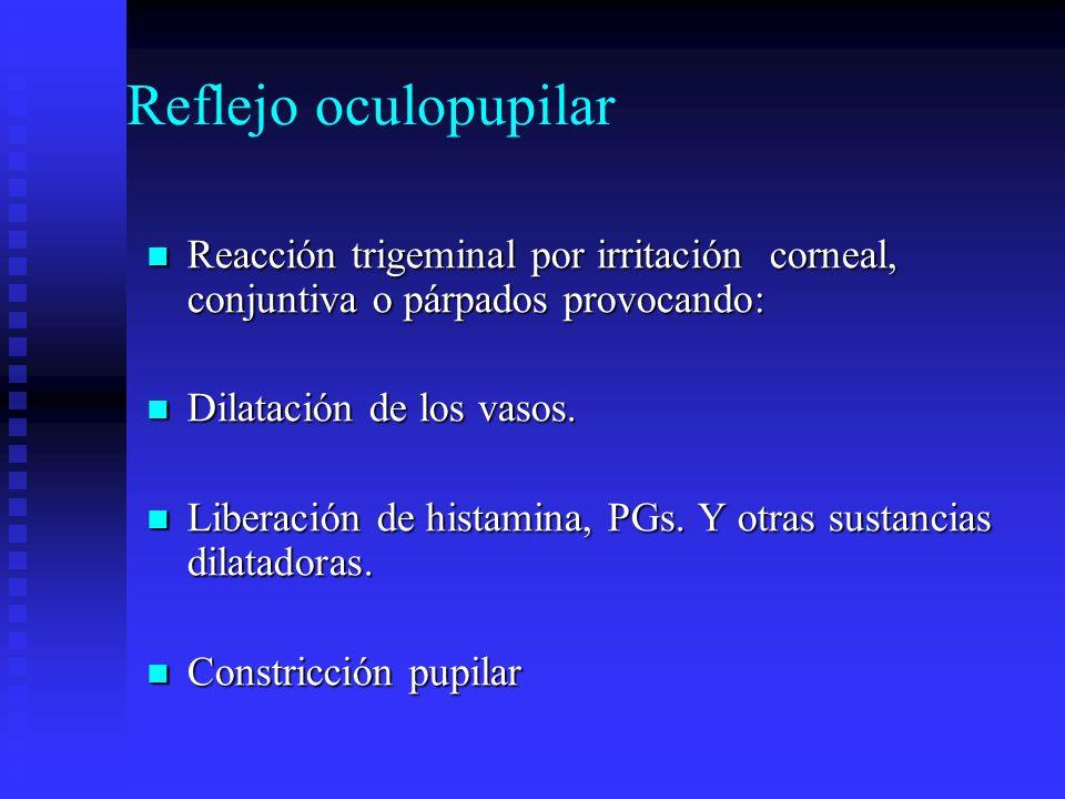 Reflejo oculopupilarReacción trigeminal por irritación corneal, conjuntiva o párpados provocando: Dilatación de los vasos.
