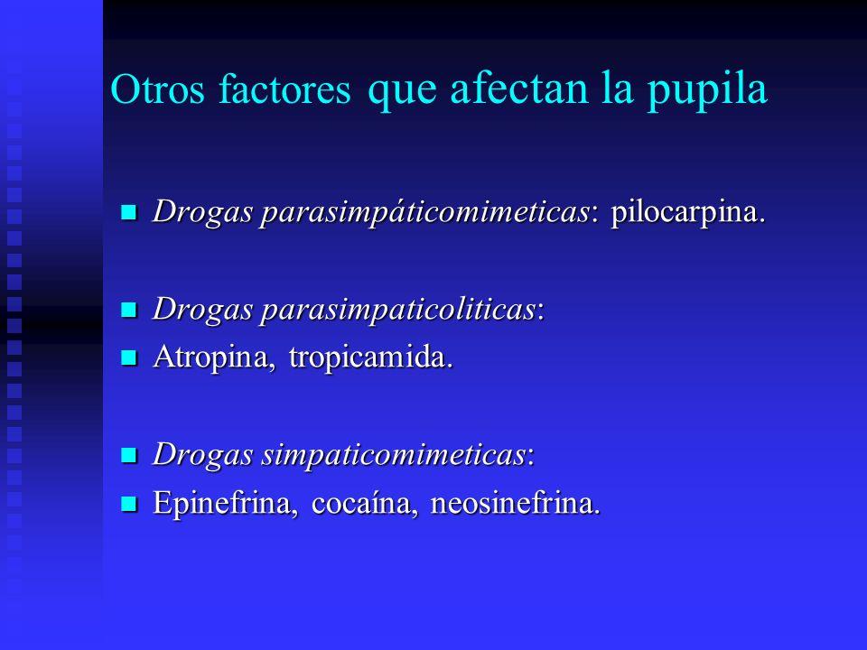 Otros factores que afectan la pupila