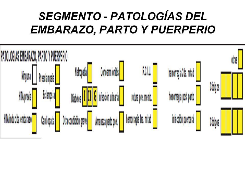 SEGMENTO - PATOLOGÍAS DEL EMBARAZO, PARTO Y PUERPERIO