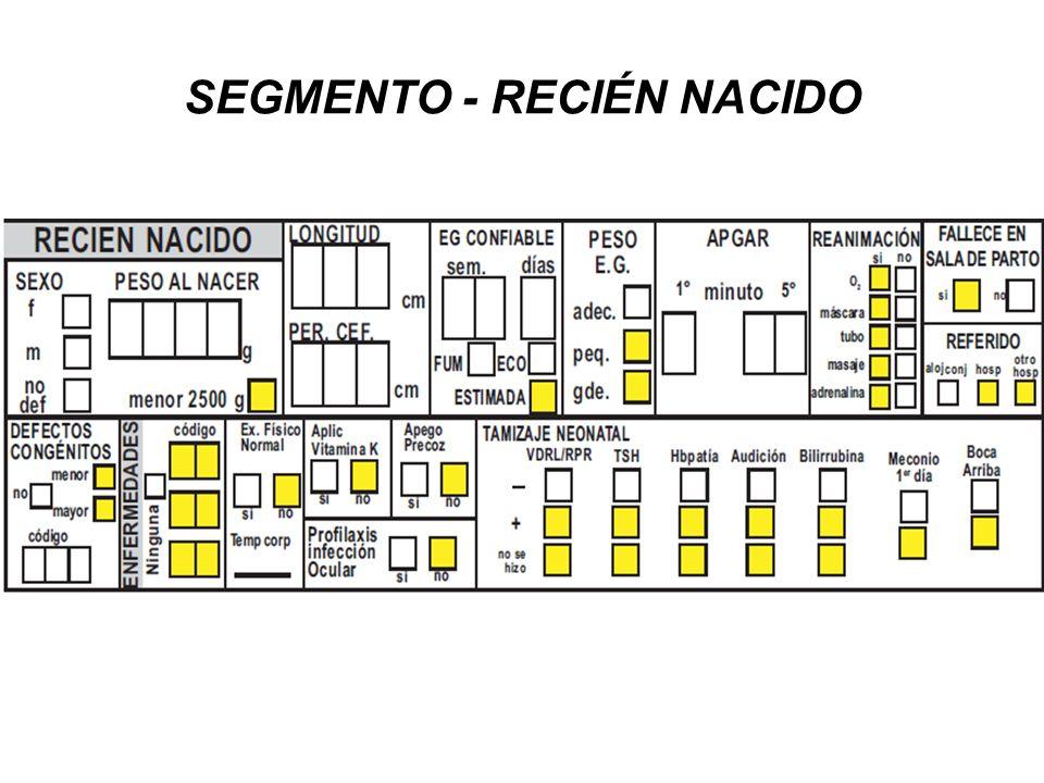 SEGMENTO - RECIÉN NACIDO