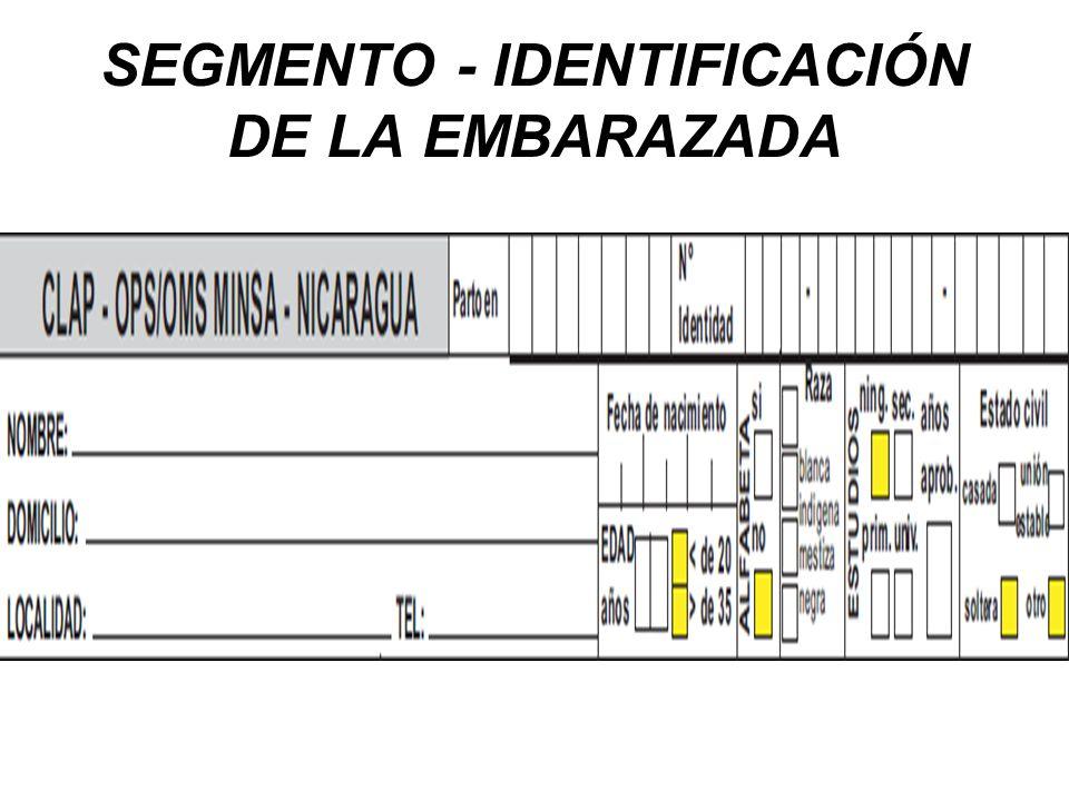 SEGMENTO - IDENTIFICACIÓN DE LA EMBARAZADA