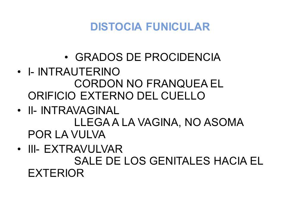 DISTOCIA FUNICULAR GRADOS DE PROCIDENCIA.