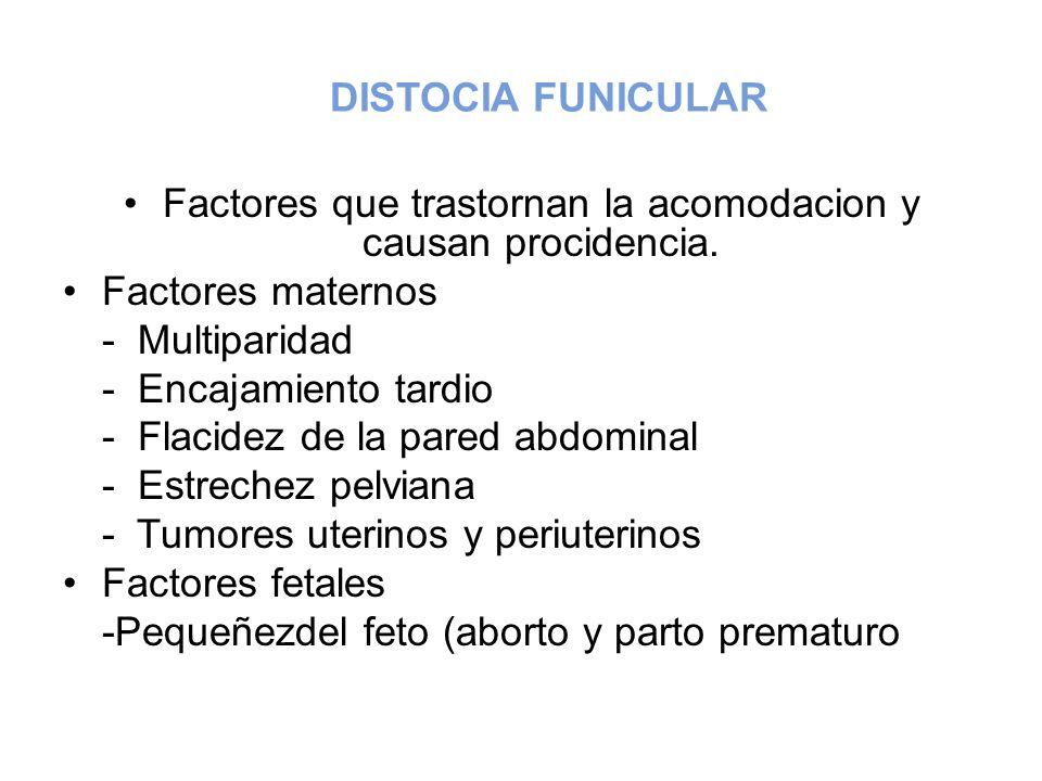 Factores que trastornan la acomodacion y causan procidencia.