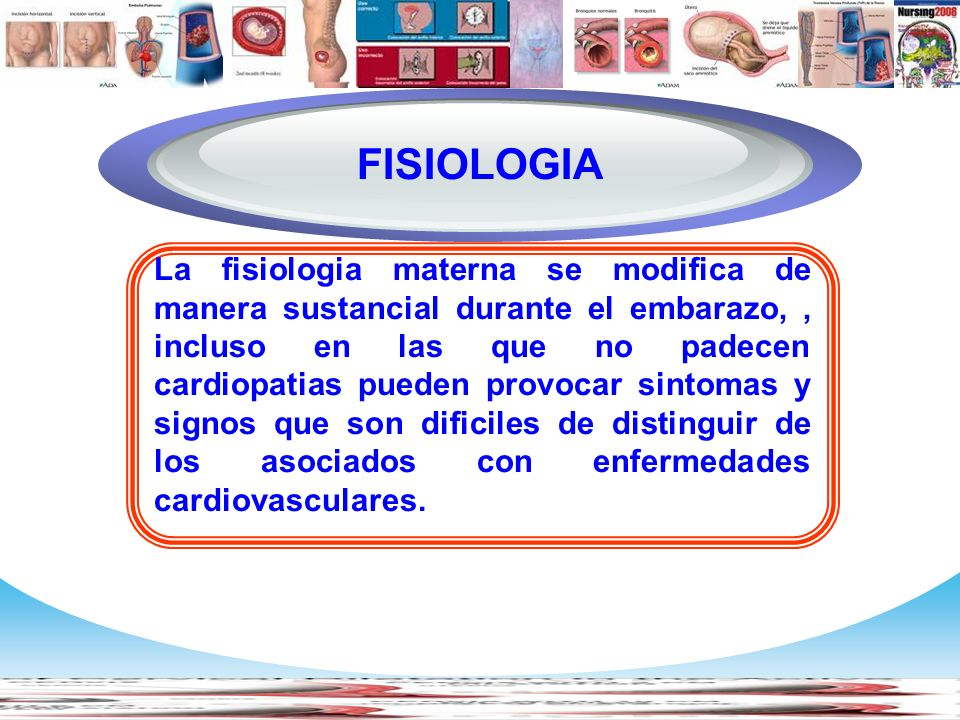 Diagram FISIOLOGIA.