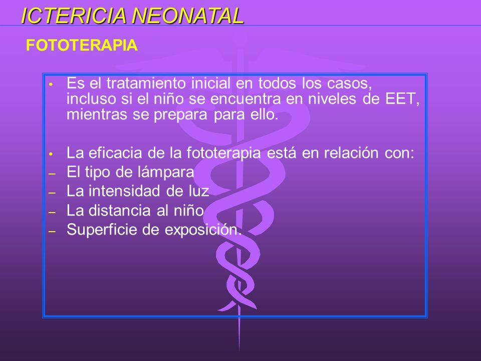 ICTERICIA NEONATAL FOTOTERAPIA