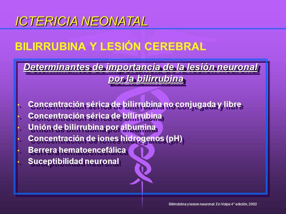 Determinantes de importancia de la lesión neuronal por la bilirrubina