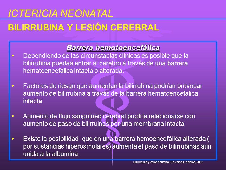 Barrera hemotoencefálica