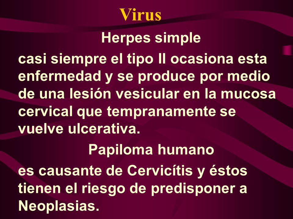 Virus Herpes simple.