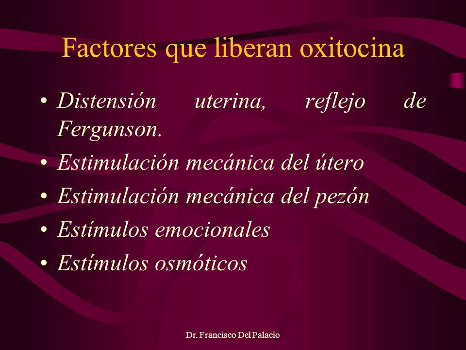 Factores que liberan oxitocina