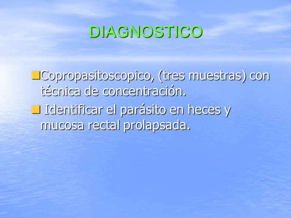 DIAGNOSTICOCopropasitoscopico, (tres muestras) con técnica de concentración.