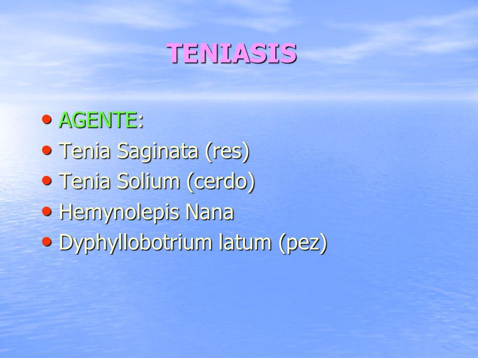 TENIASIS AGENTE: Tenia Saginata (res) Tenia Solium (cerdo)